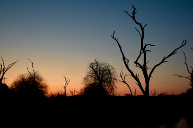 Singita African Sunset