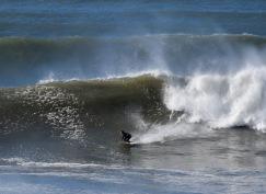 Shell Big Wave