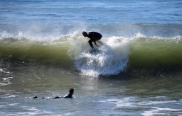 Surfing in Shell Beach